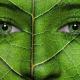 avatar for Repa