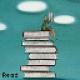 Bibliolatrist