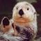 Russ Otter