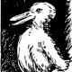 duckrabbitblog