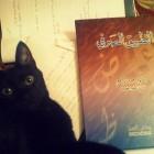 Photo of Safia Latif