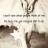 projects.angel.elizabeth@gmail.com