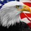 patriots4anewamerica