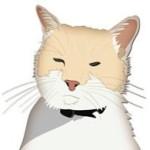 Avatar for Phoebe Kitten