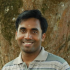 Vineeth Pillai