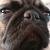 Kele's avatar