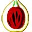 Nutmeg Publishing