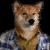 Ron's avatar