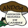 Andoa de Cambre