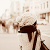 Emy Shin's avatar