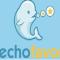 Echo Favor