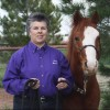Groundwork Through Horse Agility Improves Communication