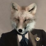 Lord Grey Fox