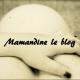 Mamandine le blog