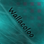 Wallacoloo