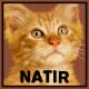 Natir