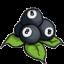 eightberry