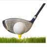 golftipcom