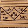 TrifoliumEllis