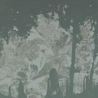 """Album review: John Brown's Body """"Fireflies""""   jmpowellblog"""