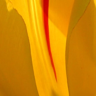 Abuja Business Reports