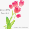beyondthebeautiful