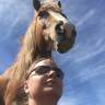 Horse Reader