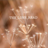 The_Lone_Read