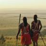 wildlifeactivistkenya