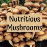 Nutritious Mushrooms!